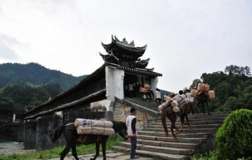 山西晋商与湖南安化黑茶|黑茶文化