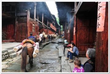 在马背上形成的文化黑茶|黑茶文化