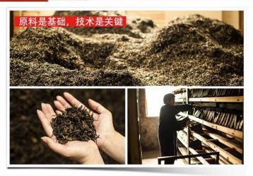 黑茶制作工序六步骤|黑茶工艺