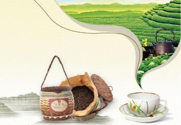 广西梧州六堡茶制作工艺介绍|黑茶制作