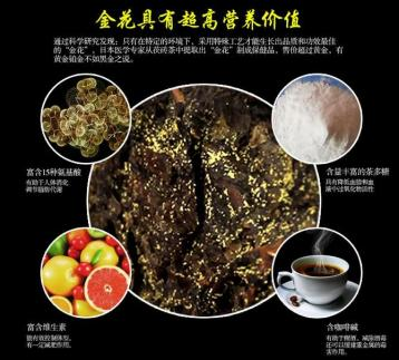 黑茶可改善肝脏功能的作用|黑茶功效