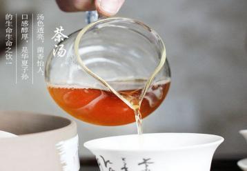 黑茶怎么喝减肥?黑茶减肥效果怎么样?