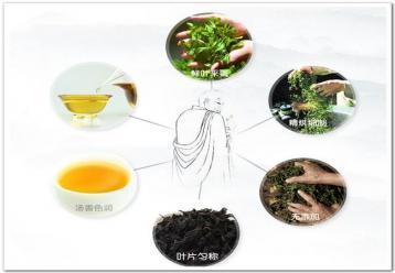 武夷岩茶的审评方法|武夷岩茶鉴定