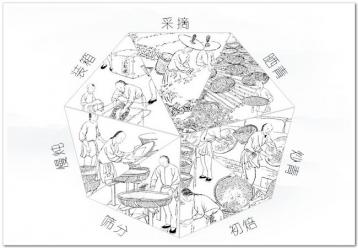 武夷岩茶的干燥方式及其优缺点|谢荣