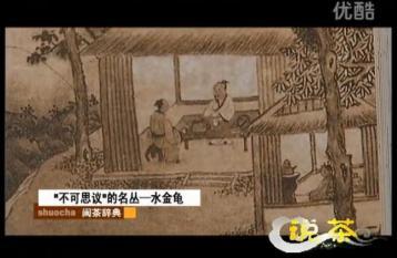 《说茶》武夷四大名枞:水金龟|武夷岩茶