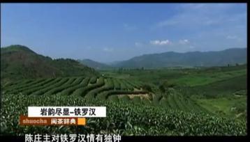 《说茶》武夷四大名枞:铁罗汉|武夷岩茶
