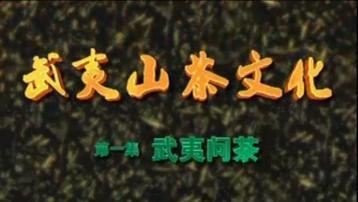 武夷山茶文化:武夷问茶|《走遍中国》