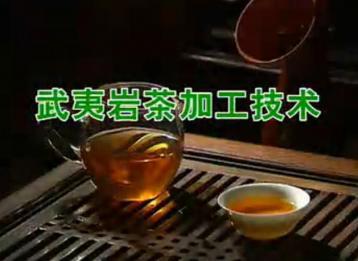 武夷岩茶加工技术|茶叶种植加工技术视频