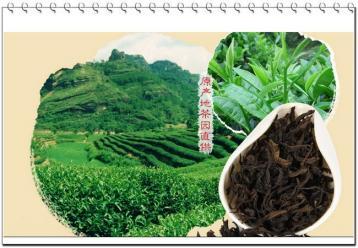 武夷岩茶清香型和传统型有什么区别?