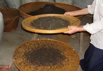 岩茶分筛和风选工艺图片|武夷岩茶制作图片