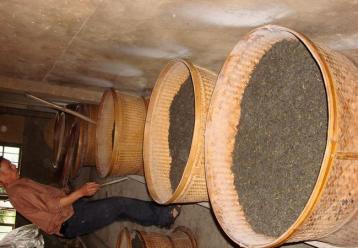武夷岩茶焙火工艺图片|武夷岩茶制作图片