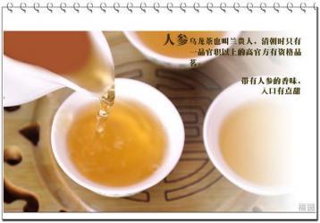 兰贵人人参乌龙茶|台湾乌龙茶种类
