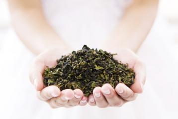 乌龙茶选购方法|如何选购乌龙茶