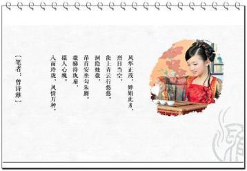 梨山高山茶图片|台湾乌龙茶图片