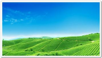 云南六大茶山的来历|普洱茶产地