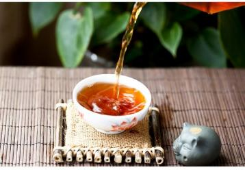 普洱茶生茶的正确泡法|普洱茶生茶的泡法