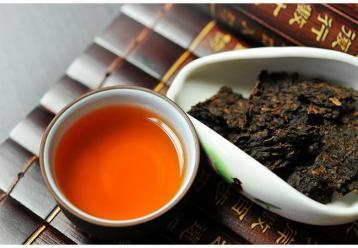 如何分辨景迈古树茶与台地茶?|普洱茶选购