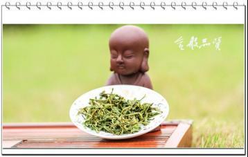 沩山毛尖的功效|黄茶保健功效