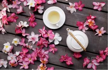 花草茶的功效与作用|花草茶的营养成分