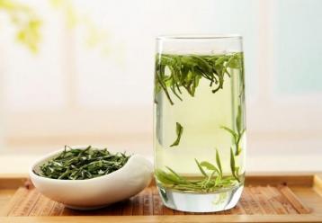 温州黄汤品质特点|黄茶选购