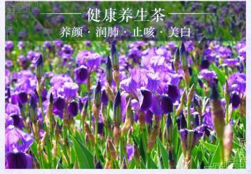 紫罗兰花茶图片|花草茶图片素材