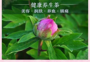 牡丹花茶图片|花草茶图片素材