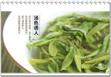 黄茶审评术语|黄茶品鉴