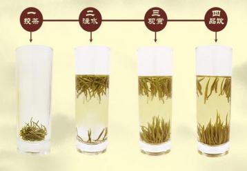 君山银针的冲泡方法|黄茶泡法