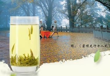蒙顶黄芽的冲泡方法|黄茶冲泡