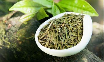 莫干黄芽简介|黄茶品种