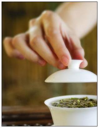 鹿苑毛尖的冲泡方法|黄茶泡法