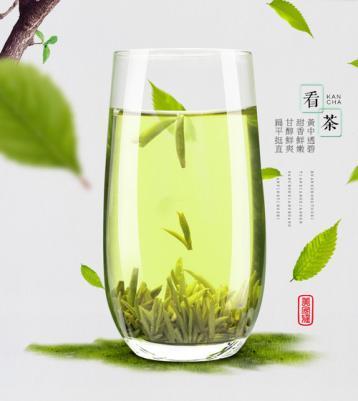 黄茶的概念:什么是黄茶|黄茶知识