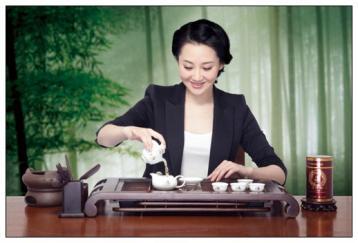 铁观音茶艺表演解说词|乌龙茶茶艺表演