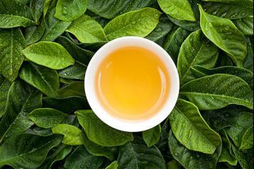 土法防治茶叶病虫害|无公害茶叶栽培