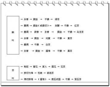 茶叶基本加工流程|茶叶加工流程