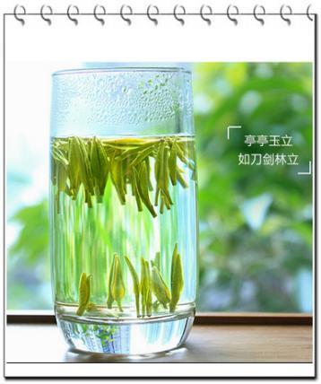 金坛雀舌炒制工序|绿茶炒制