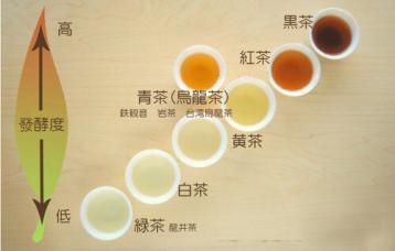不发酵茶、半发酵茶、全发酵茶、后发酵茶简单分类