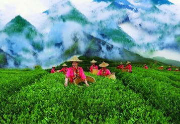 2016广州茶博会|2016中国(广州)高端茶产业展览会