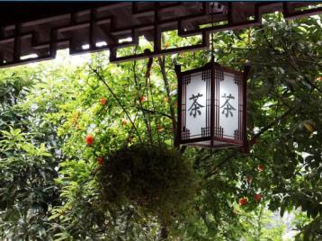杭州风景区农家茶楼经营升级发展研究