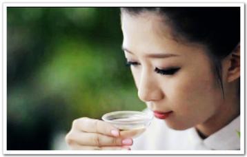 以香气辨别茶叶品种与品质|茶叶审评