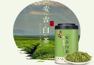 安吉白茶|浙江十大名茶