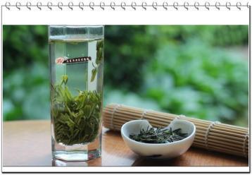茅山青峰茶|江苏十大名茶