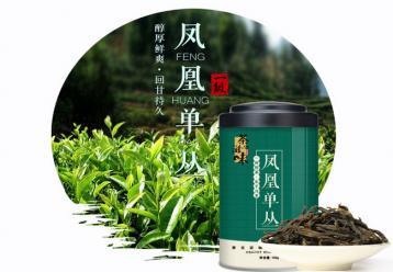 凤凰单枞茶|广东名茶