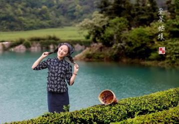 金龙茶|广西名茶