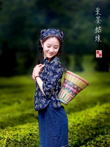 河南名茶:赛山玉莲·绿茶