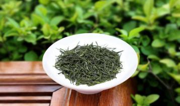 信阳震雷剑毫·绿茶|河南名茶
