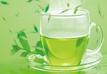 桐柏水濂玉叶·绿茶|河南名茶