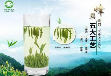 河南名茶:桐柏毛尖·绿茶