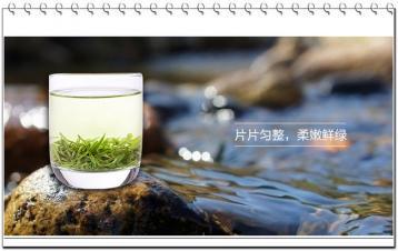 松峰茶|湖北十大名茶