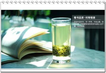 兰岭毛尖|湖南名茶